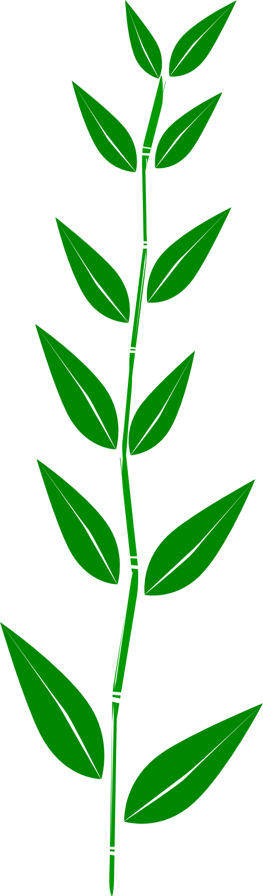 free clipart green leaf - photo #34