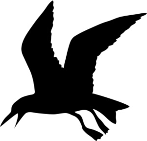 Seagull Clipart Image - Black and white silhouette of a seagull in ...
