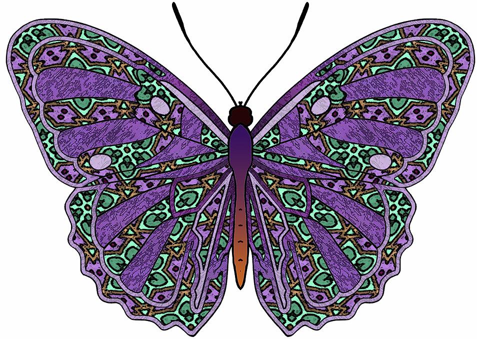 Butterflies Art Images Crafts Butterflies Set