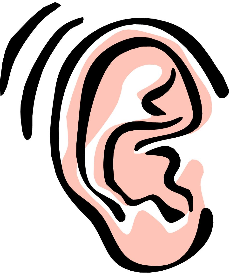 Clip Art Of Ears - ClipArt Best