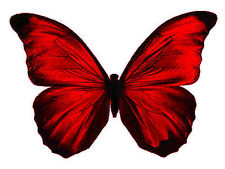 Red edible butterflies cake decorating