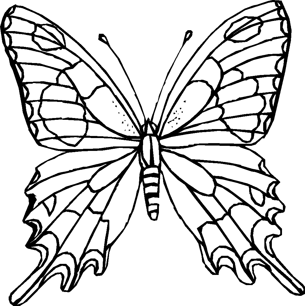 Outline Of Butterflies For Colouring - ClipArt Best