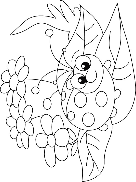 bug coloring pages ladybug - photo#14