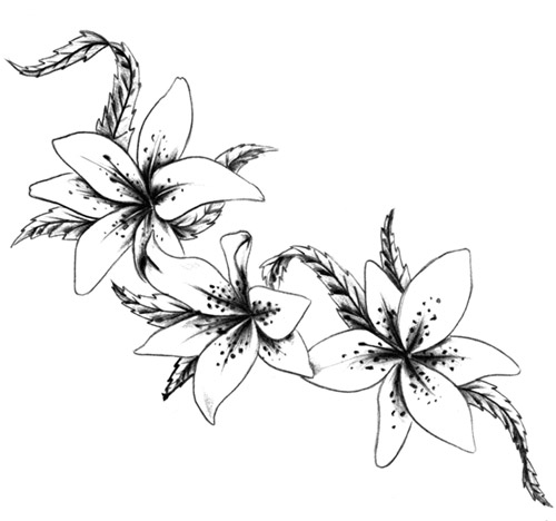 Lily Flower Tattoo Ideas - ClipArt Best
