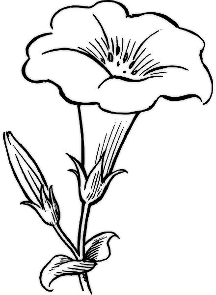 free funeral flower clip art - photo #41