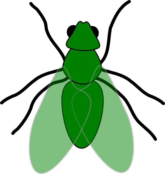 fruit fly clipart - photo #39