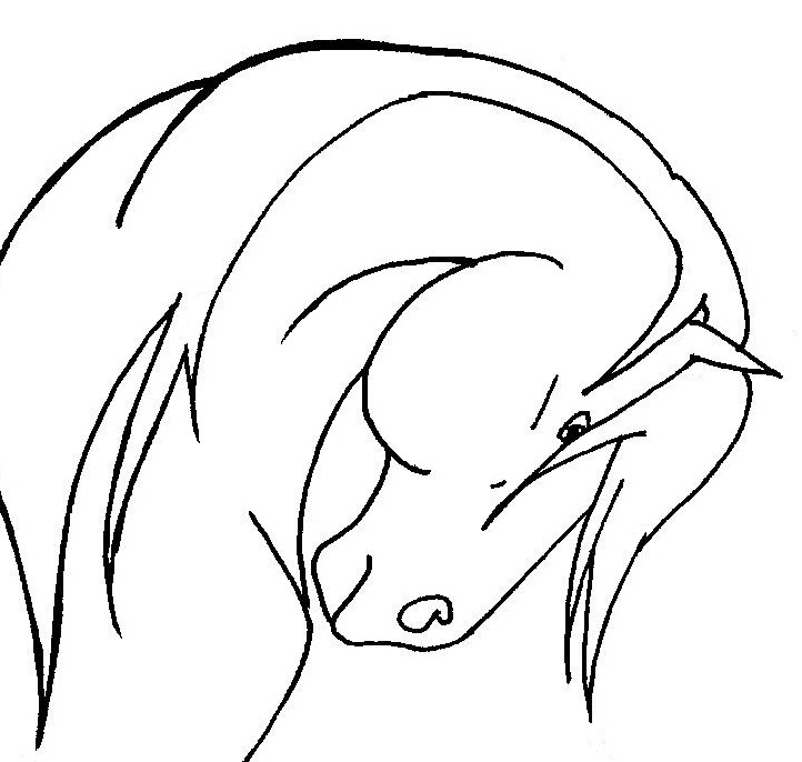Line Drawing Head : How to draw a horse head clipart best