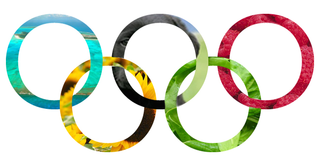 olympic rings images clipart best olympic rings clip art free olympic rings clip art free