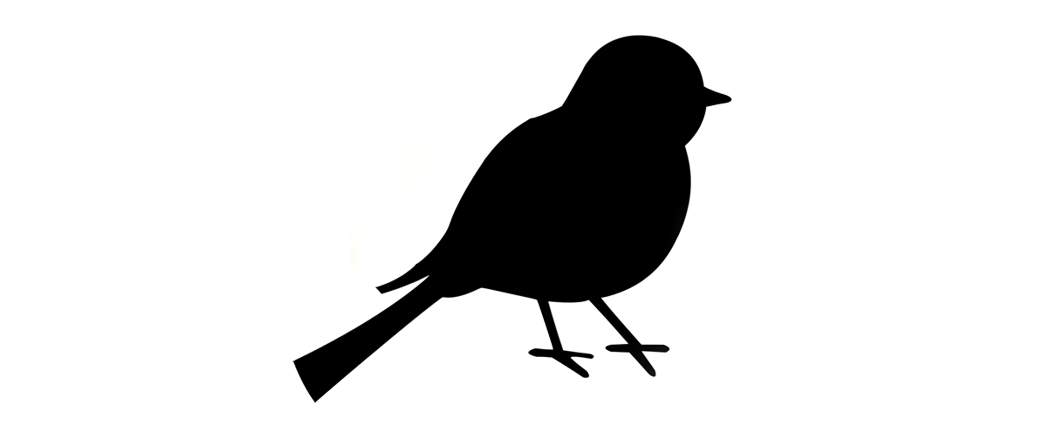 Graphic Designs Images 18 Graphic Bird Images