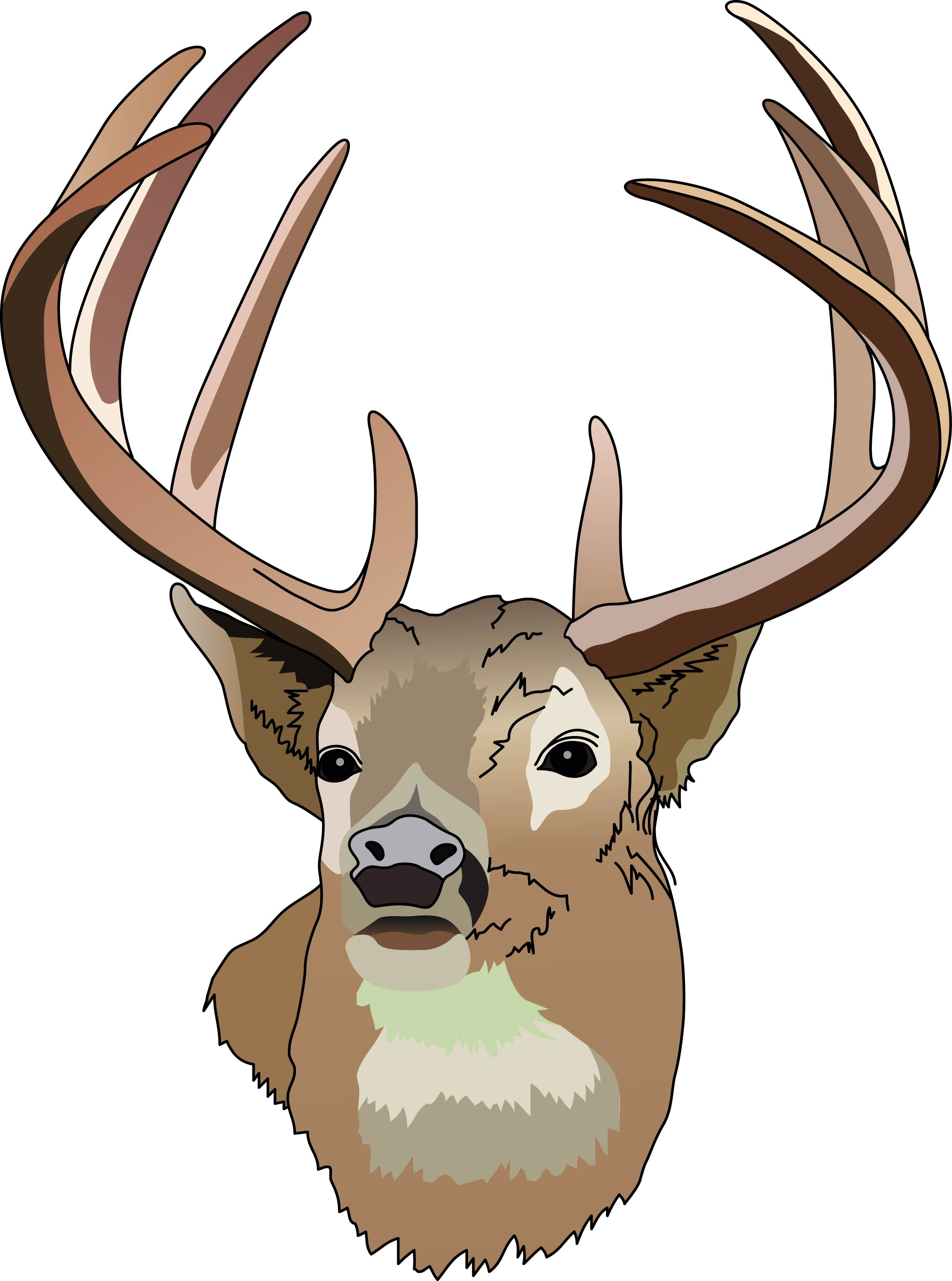 36 Deer Art Pictures Free Cliparts That You Can Download To