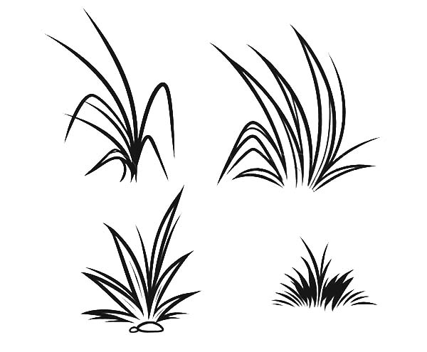 grass coloring pages - photo#22