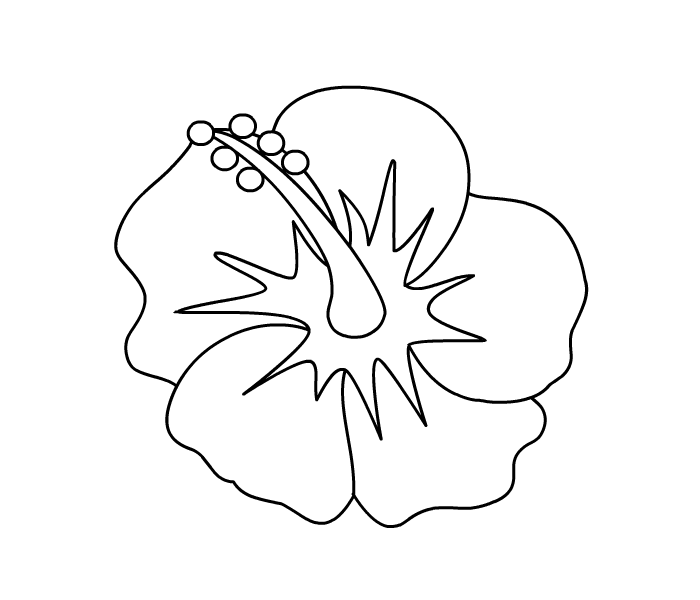Butterfly Coloring Pages in addition 98 together with Realistic Bunny Coloring Page together with Sunflower Flower Coloring Sheet besides Phonics. on flower coloring pages printable free