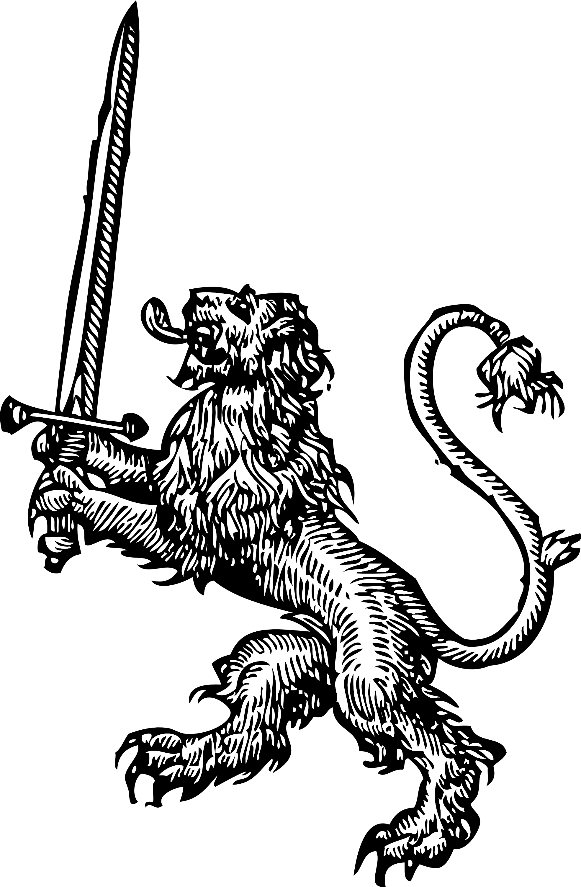 Line Drawing Of Lion : Line drawing lion clipart best