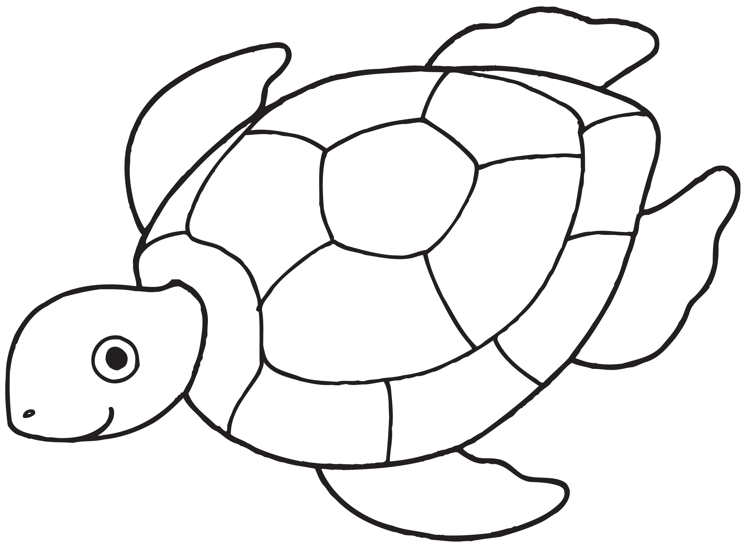 Black And White Line Drawings Of Animals : Black and white drawing of a sea turtle to print free