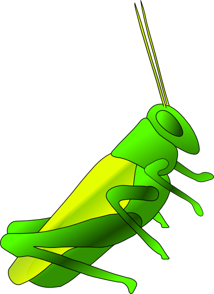 Cricket Insect Clip Art - ClipArt Best