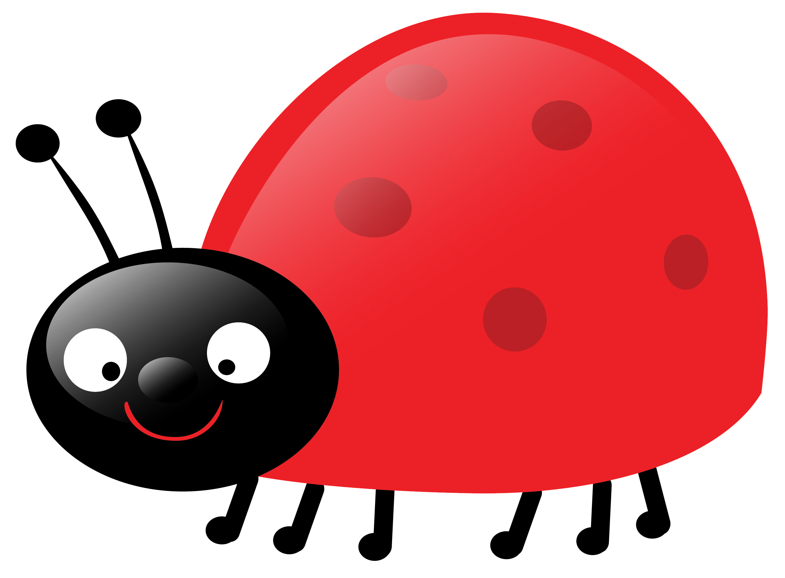 Cute Ladybug Pictures - ClipArt Best
