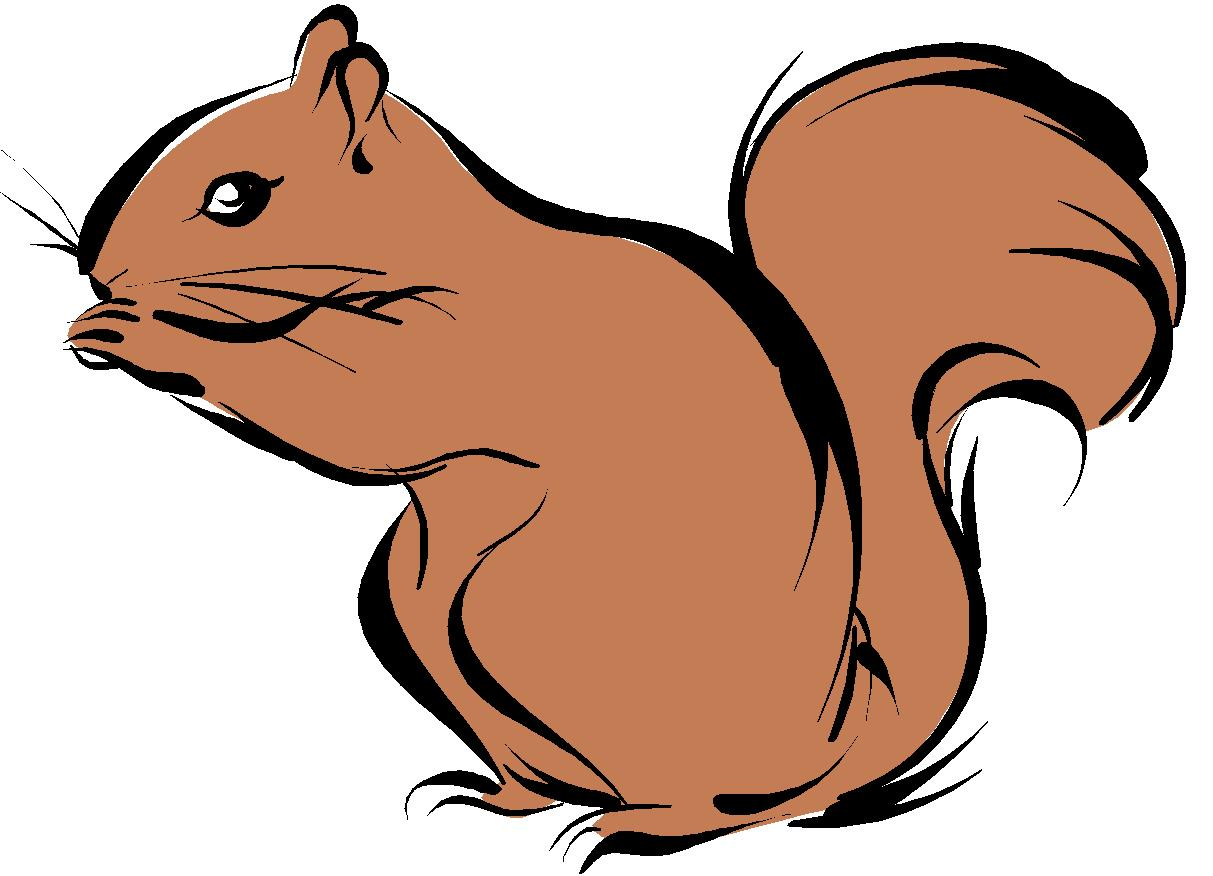 clip art cartoon squirrel - photo #9