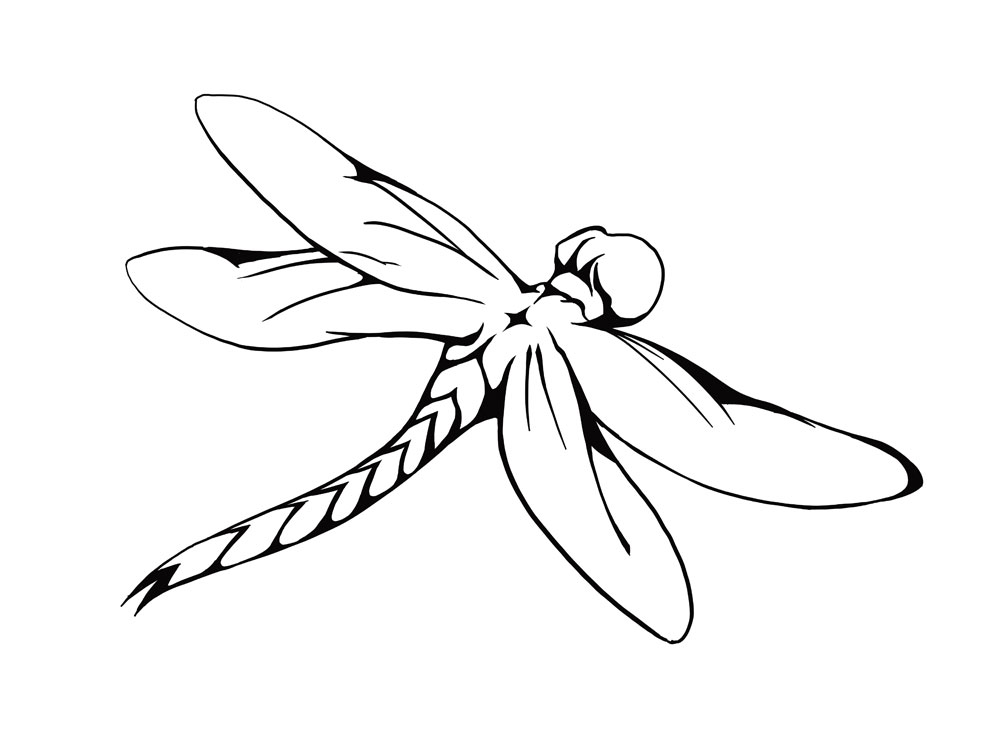 Dragonfly Line Drawing - ClipArt Best