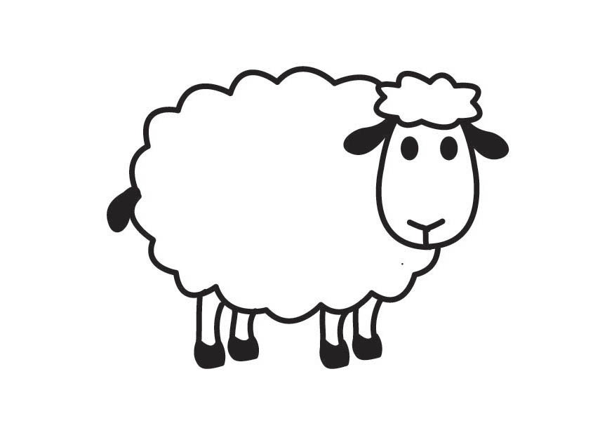 How to draw a sheep - photo#10