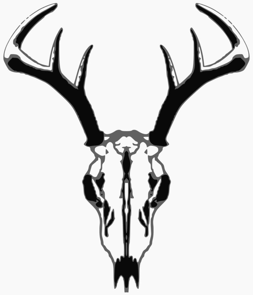 deer skull logo clipart best