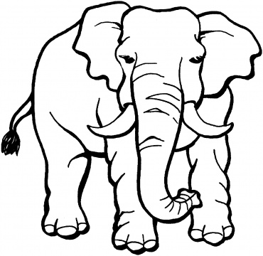Elephant Coloring Page - ClipArt Best