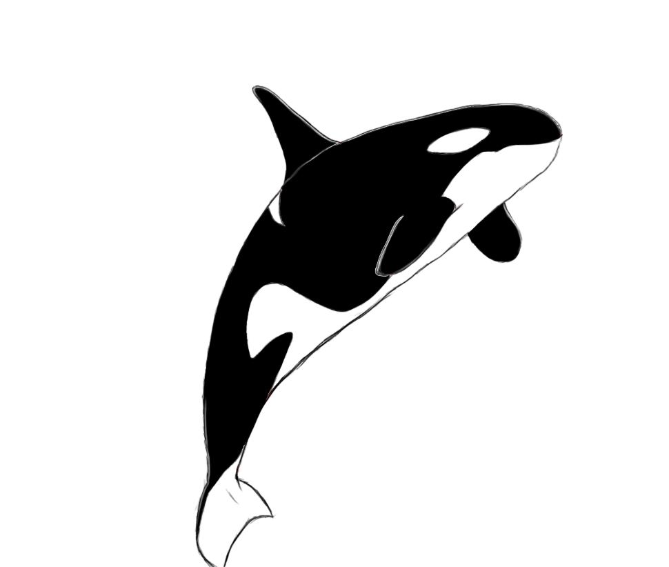 Can t find the perfect clip-art Orca Whale Cartoon