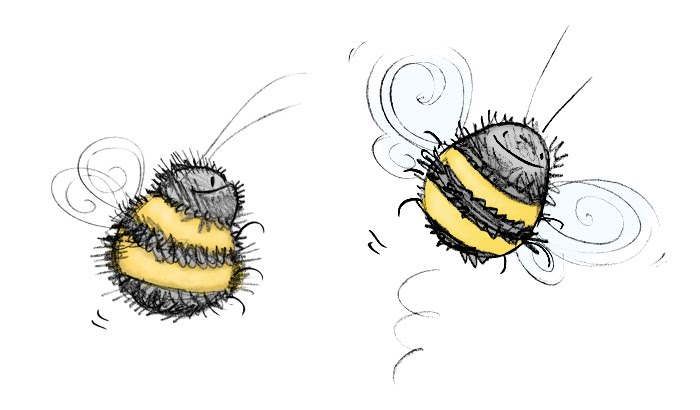 28 bumblebee sketch . Free cliparts that you can download to you ...