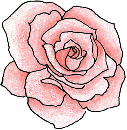 Simple Line Art Rose : Roses outline drawing clipart best