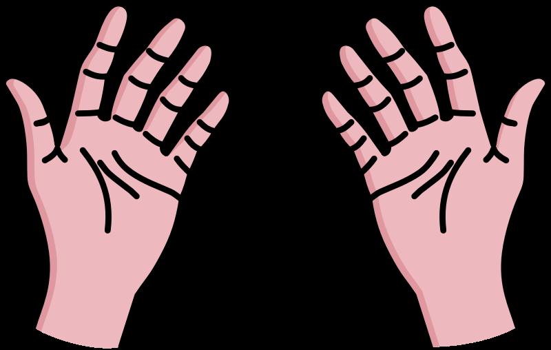 Palm Hand Cartoon