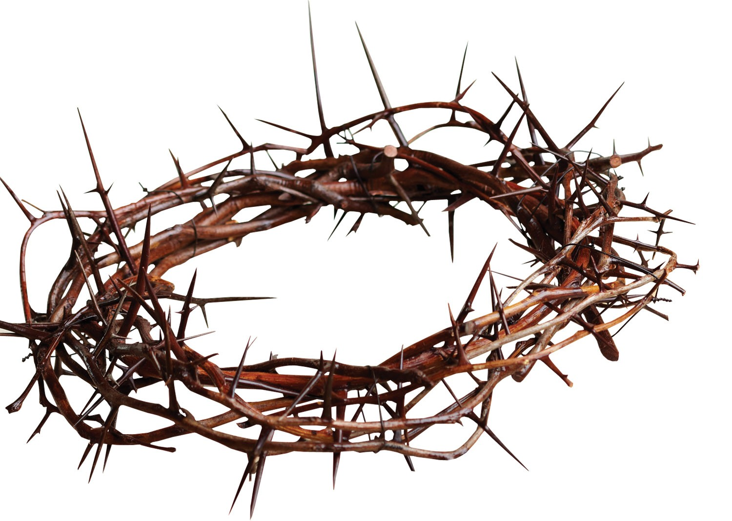 Jesus Thorn Crown Art Crown of thorns clip art