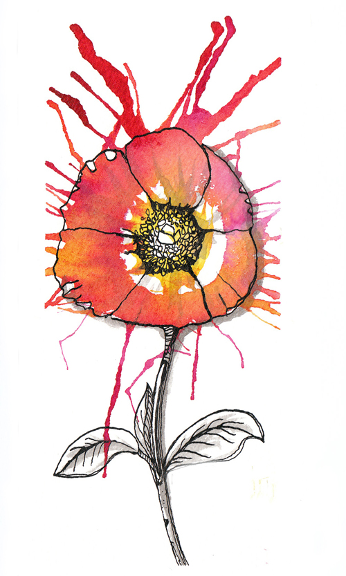 Line Drawing Poppy Flower : Drawing poppies related keywords suggestions