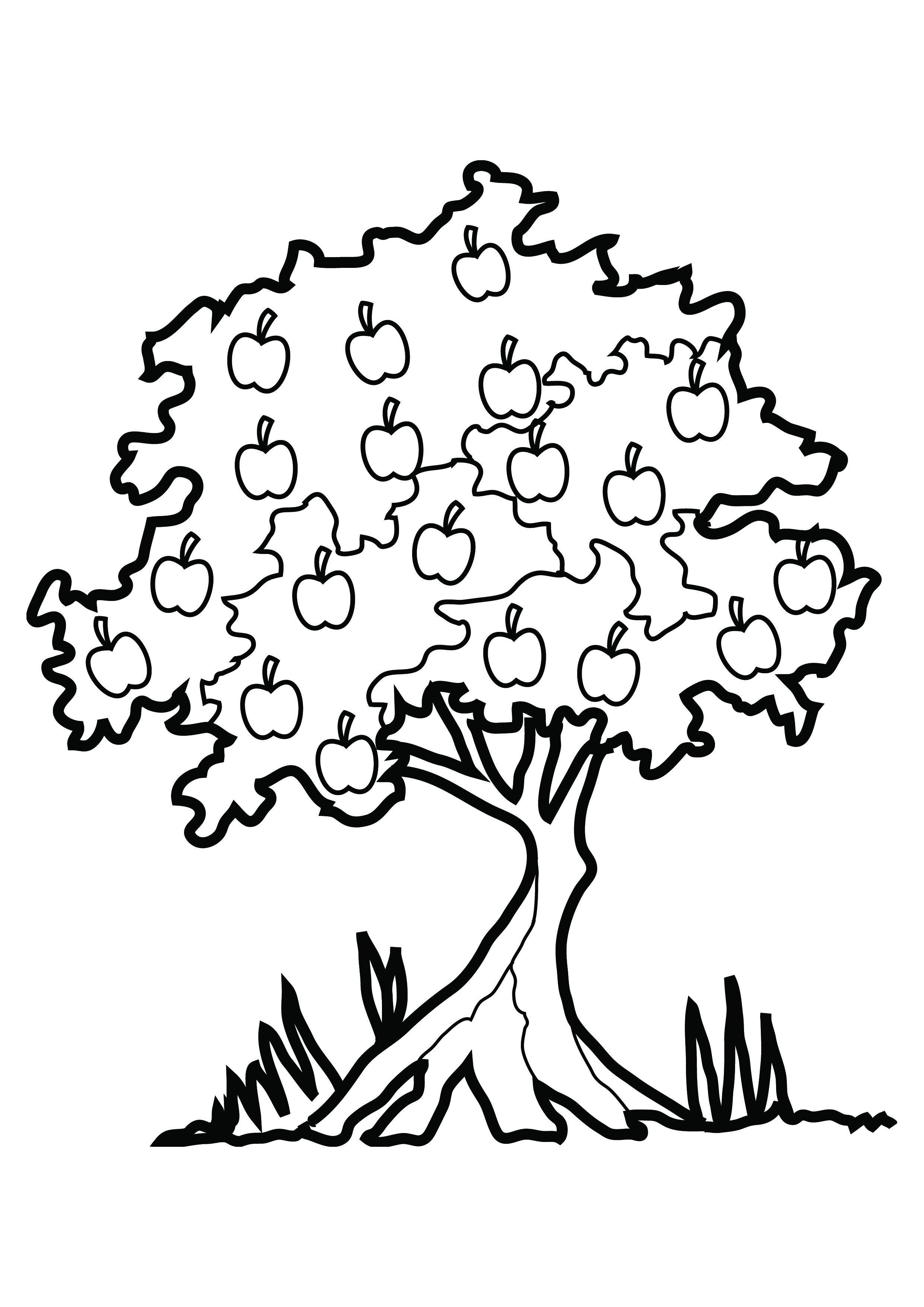 free coloring pages tree - photo#20