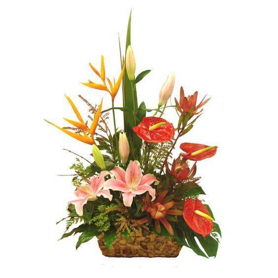 Flowers basket pics clipart best