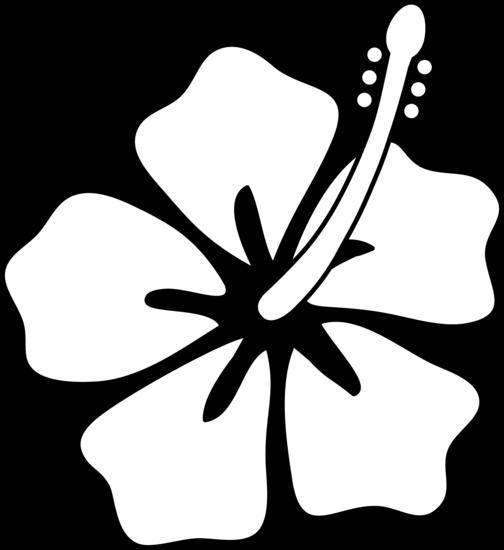 Flower Line Drawing Clip Art Free : Hibiscus flower line art free clip