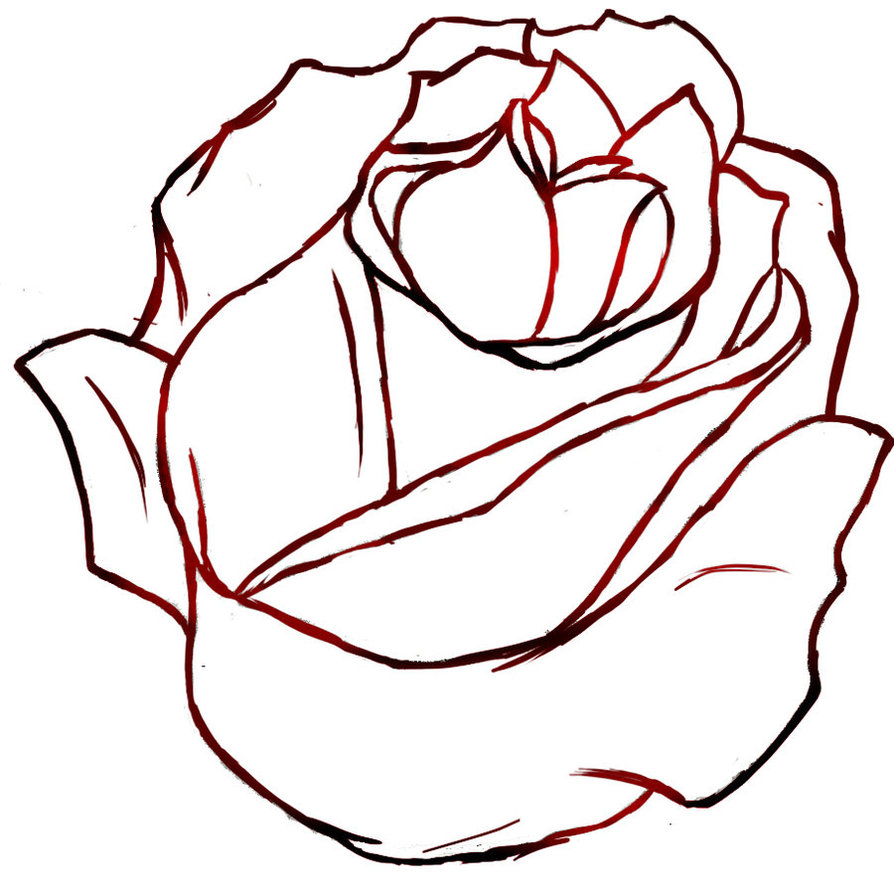 Red Flower Line Drawing : Red rose outline clipart best