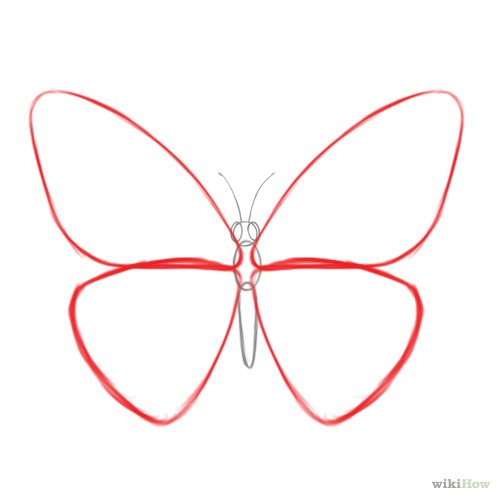 How to Draw a Butterfly: 14 Steps (with Pictures ...