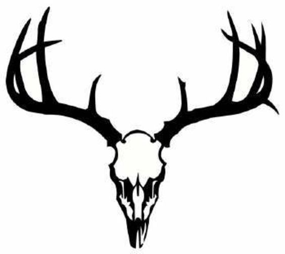Clip art, Deer and Deer skulls
