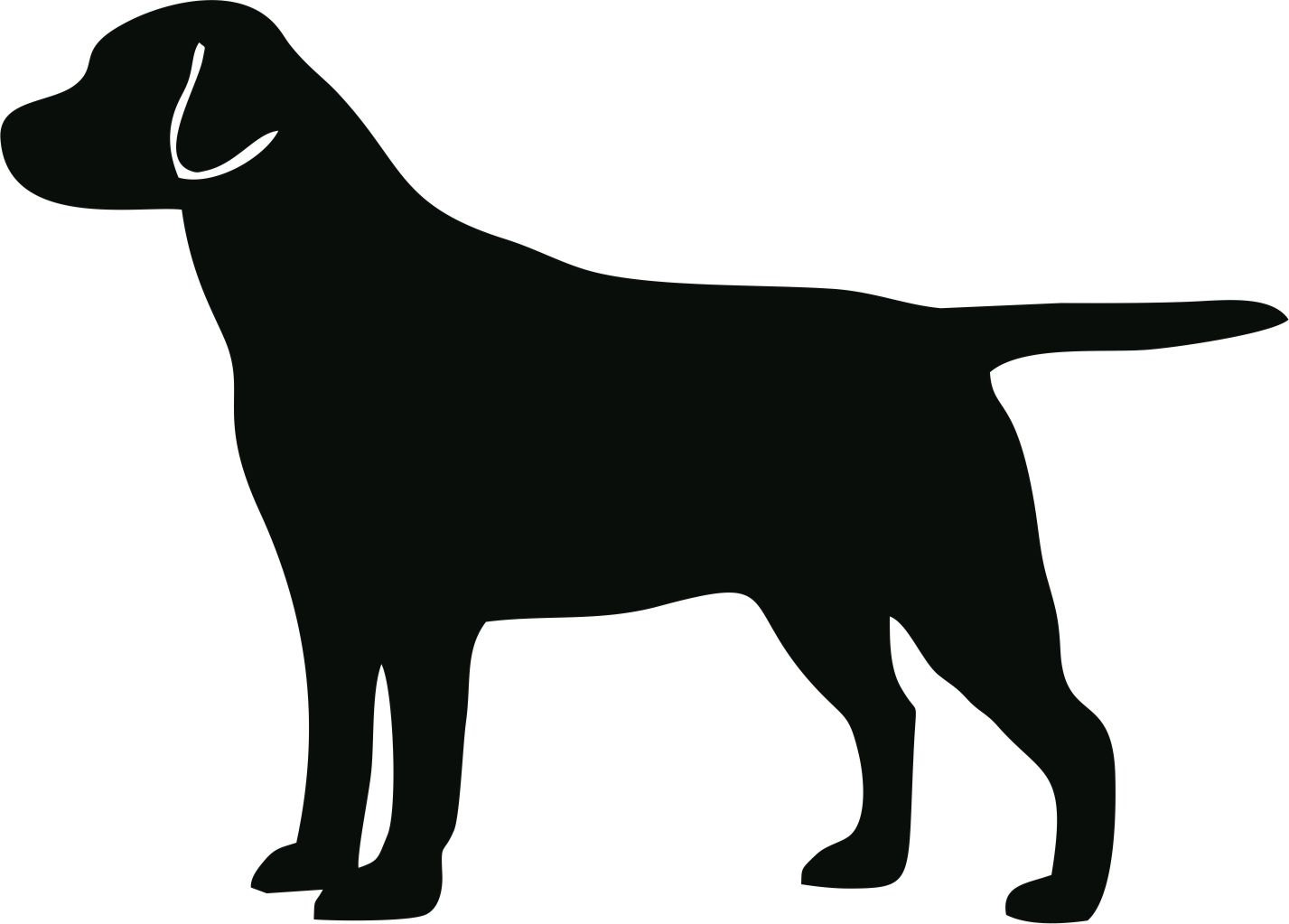 Black Lab Outline Vector image of an labrador