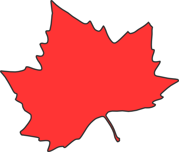 Maple Leaf vs Sycamore Leaf Maple Leaf Clip Art600 x 510