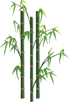 bamboo trees png - photo #23