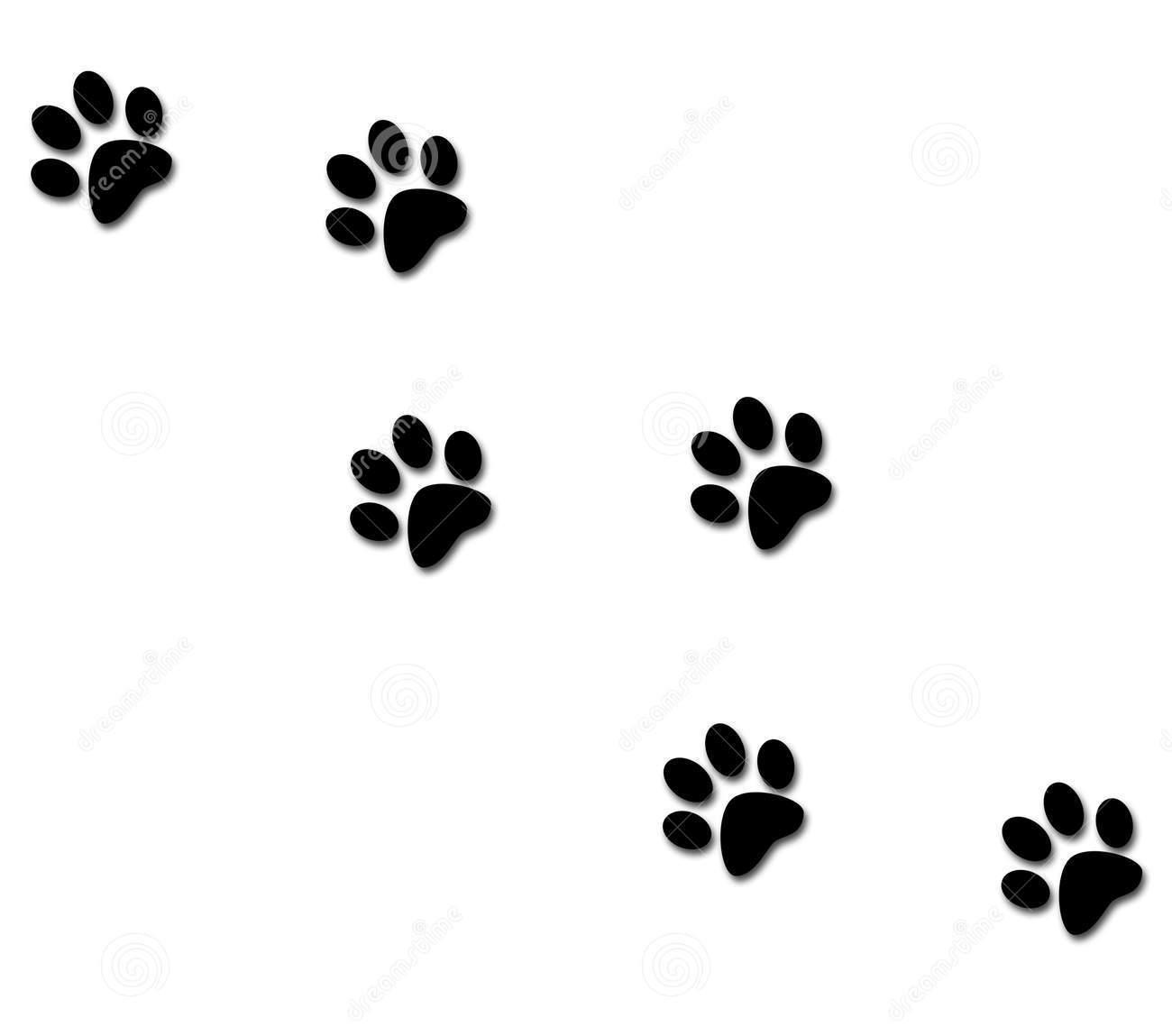 Cat Paw Stencil Clipart Best