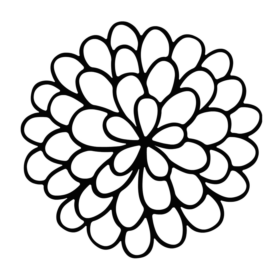 Line drawing of a marigold clipart best for How to draw a basic flower