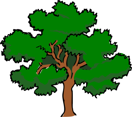 Oak Tree Drawings Clipart Best