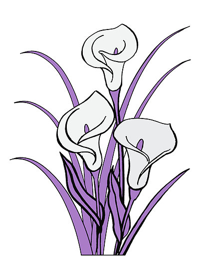 Calla Lily Floral Bouquet in Purple quot  by MyBestDesigns   RedbubbleCalla Lily Flower Drawings