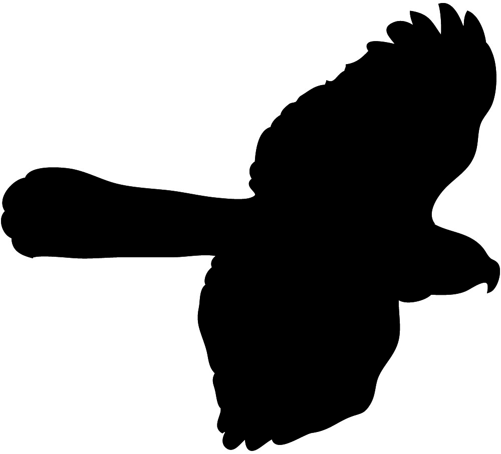 Clipart Of A Hawk In Flight - ClipArt Best