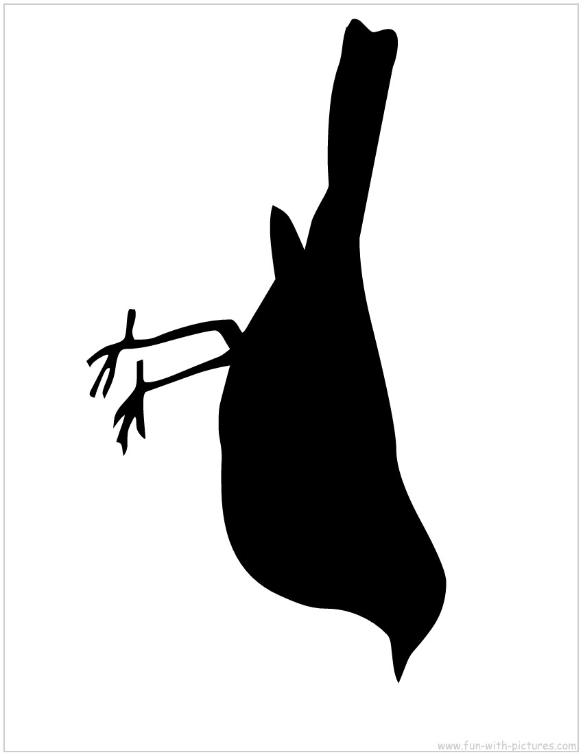 Cut out bird silhouette flying clipart