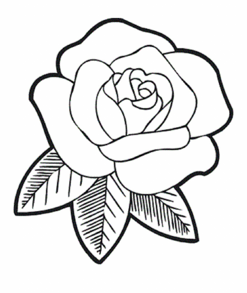 Line Drawing For Kids : Rose drawings for kids clipart best