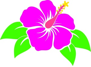 Discover the Language amp Meanings of Flowers  Teleflora