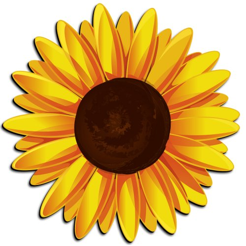 cartoon sunflower clipart best