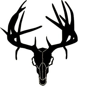 Deer Skull Drawings Clipart Best
